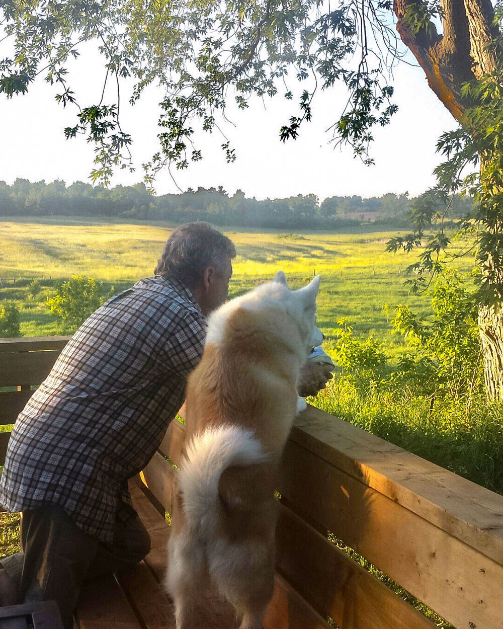 Man and Dog looking out across land