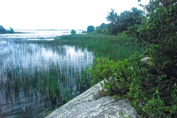 Bostwick Island