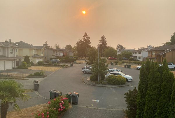 An orange sun in a sky polluted by wildfire smoke over a residential area.